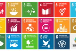 Conseil et commerce dans le domaine du Développement Durable