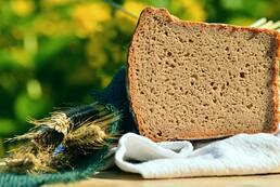 Boulangerie / Tiers lieu / ECO-hébergement intergénérationnel